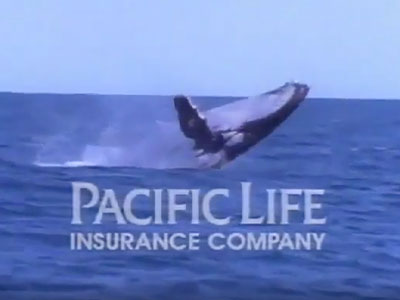 Pacific Life debuted the TV advertisement